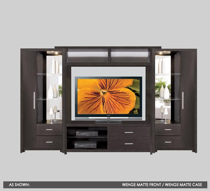 center wall unit w open display and closed storage space
