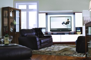 Modern Home Entertainment Solutions